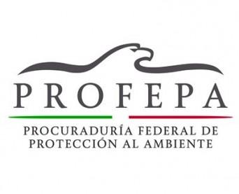 logo_profepa_2013_portal